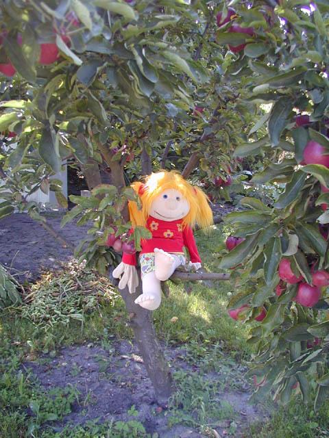 Jule im Apfelbaum