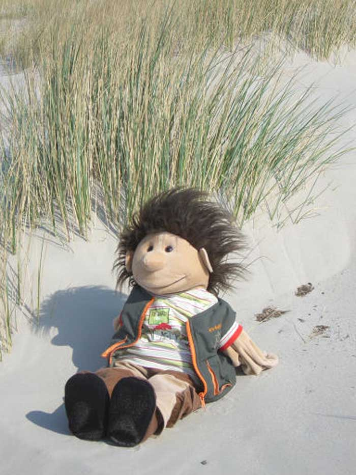 Marvin im Sand